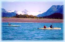 sea kayaking kachemak bay homer alaska